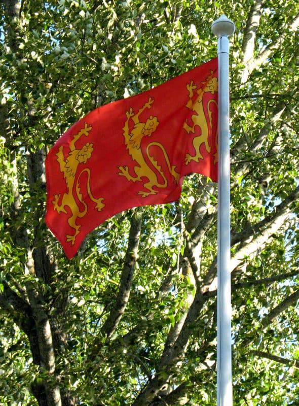 Rikhard Leijonamielen lippu